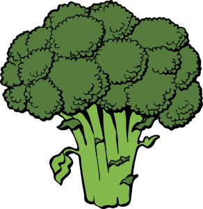 Brokkoli er utmerket for å blokkere kollagenets utfasing i kroppen. Foto: Pixabay