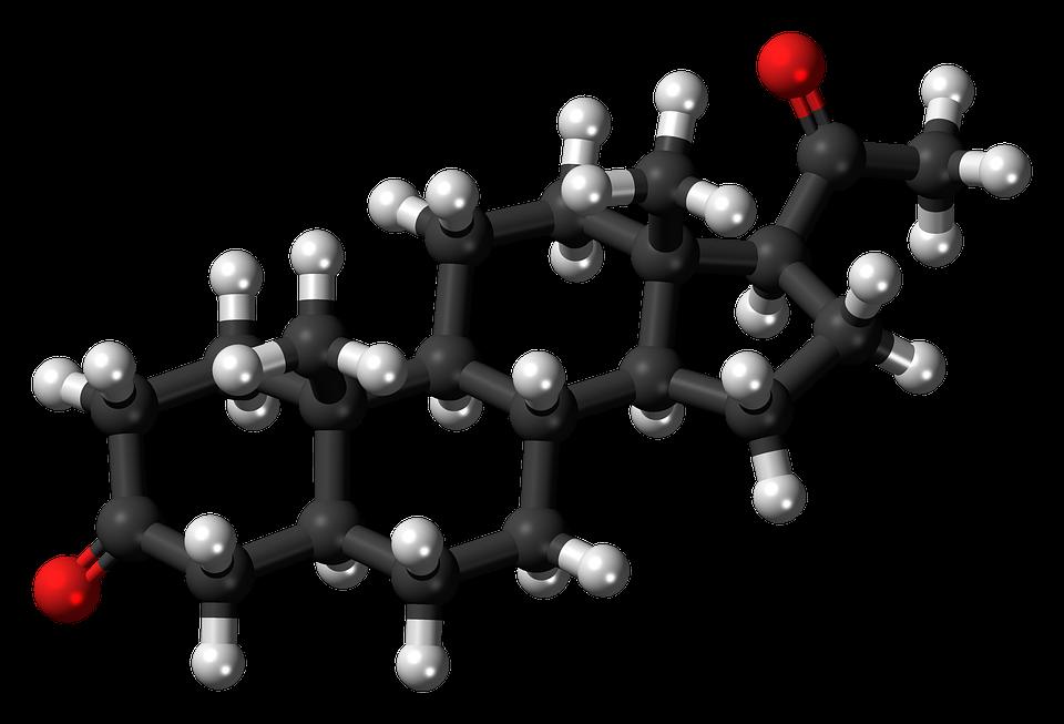 steriod hormon